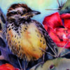 cactus wren watercolor on canvas Ans Taylor