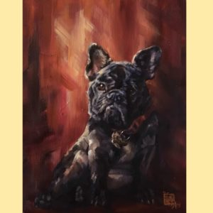 frenchie french bulldog animal portrait