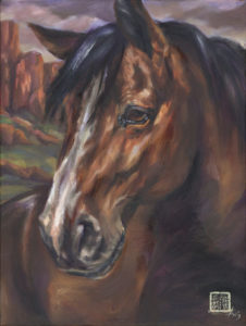 arizona mustang horse portrait