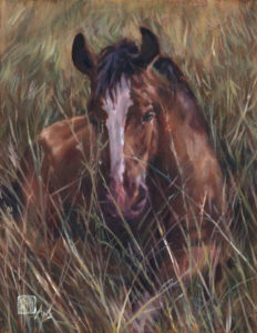oil painting Ans Taylor 14x18 bronco bay horse brown horse meadow